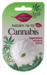 Balsam konopny do ust BIONE COSMETICS CANNABIS 6ml